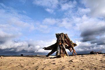 Zandvlakte von Paul Arentsen
