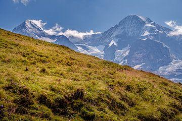 Alpenweide met Mönch en Eiger op de achtergrond van Steven Van Aerschot