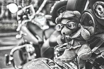 Harley Davidson Beer van Erik Reijnders