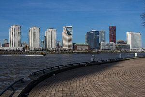 Skyline van Rotterdam.