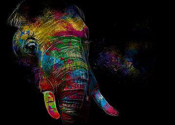 kleurrijke olifant van De nieuwe meester