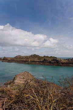 Uitzicht Point du Grouin, Bretagne (Franrkijk) von Lisa Groothuis