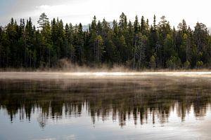 Misty Morning van Albert Beukhof