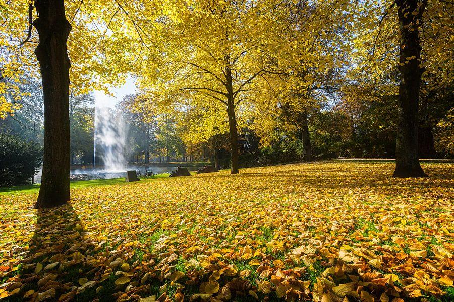 Herfst in Breda Park Valkenberg
