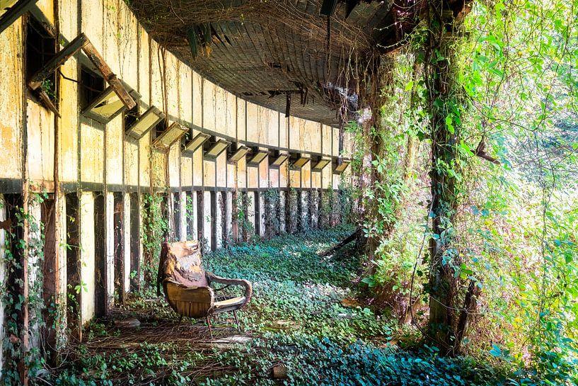 Verlassener Stuhl zwischen Pflanzen. von Roman Robroek