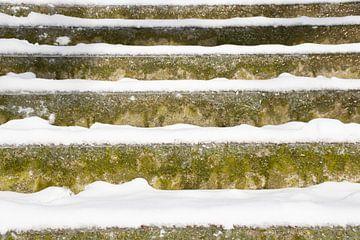 Bevroren trappen van Ingrid de Vos - Boom