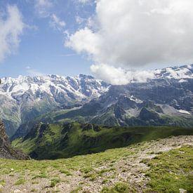 Mountainview van André Hamerpagt