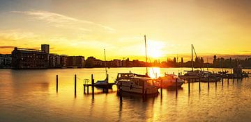 Berlin Rummelsburger Bucht im Sonnenuntergang von Frank Herrmann