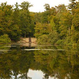 Een vijver met waterval in het bos van Gerard de Zwaan