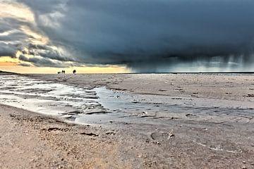 een wandeling op het noordzeestrand van eric van der eijk