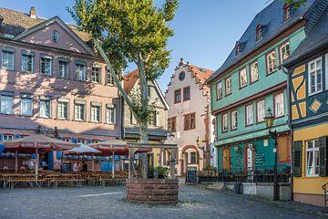 Höchster Schlossplatz, Frankfurt, Hessen van Christian Müringer