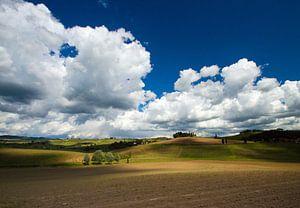 Toscane van Frank Quax