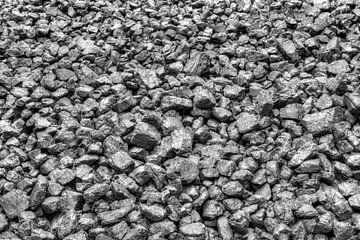 HDR kolen in B&W van