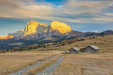 Herfst op de Alpe di Siusi van Michael Valjak