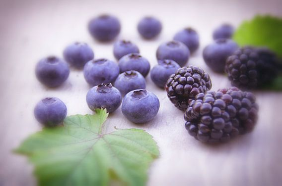 Vruchten uit het bos van Tanja Riedel