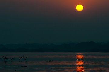 Zonsopkomst boven de Nijl