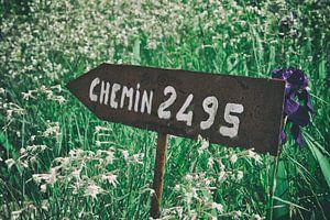 Chemin 2495