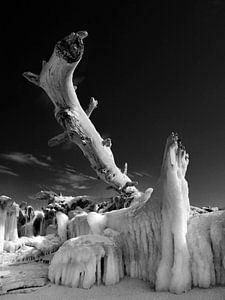 Eisriesen – Darß Weststrand im Winter 2018 von