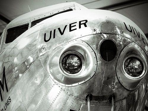DOUGLAS DC-2 (Uiver) von Wilfred Roelofs