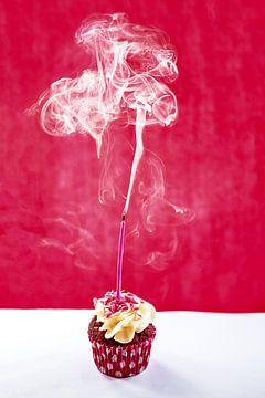 Rook van Dani Teston