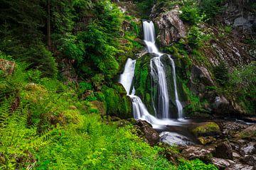 De Tribergse watervallen in het voorjaar van Christian Klös