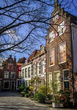 Pieterskerkhof Leiden van Dirk van Egmond