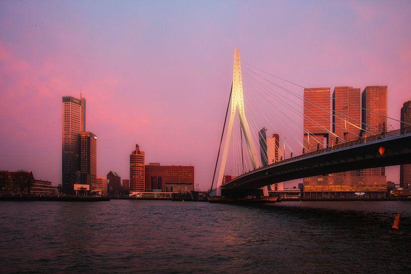 Rotterdam skyline van Helga van de Kar