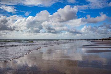 zoutelande strand van anne droogsma