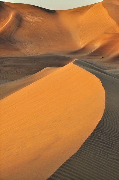 Zandduinen in Namibië van Esther van der Linden