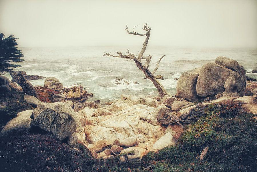 Ghost Tree van Pascal Deckarm