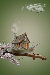 The Snail house van