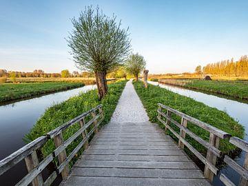 Houten brug in de polder van Martijn Joosse