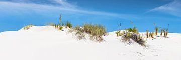 WHITE SANDS Idyllisches Panorama von Melanie Viola
