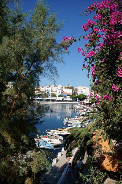 Agios Nikolaos van Diebe Media