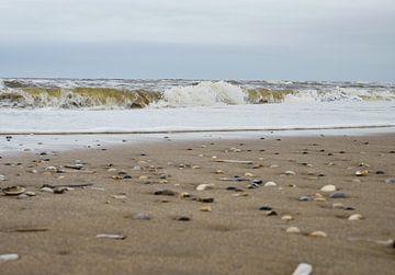 Wellen am Strand mit Muscheln von Moniek van Rijbroek