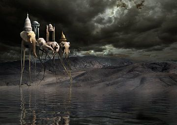 olifanten aan het water sur Dray van Beeck