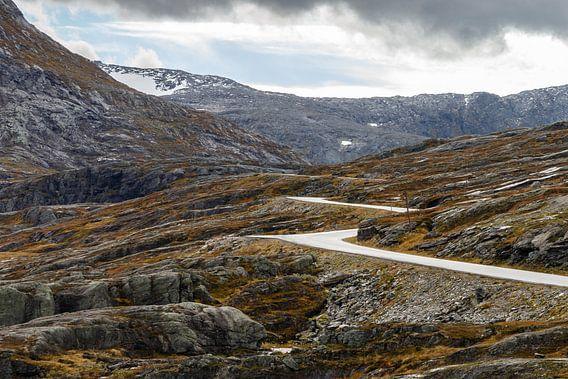 Weg door Noorwegen