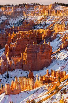 Wintersonnenaufgang im Bryce Canyon N.P., Utah von Henk Meijer Photography