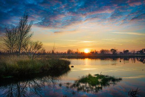 De Groote Peel bij zonsondergang van