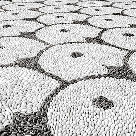 patronen in zwart wit van eric van der eijk