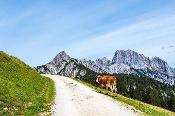 Gezicht op de Litzlalm met koe in Oostenrijk van Rico Ködder