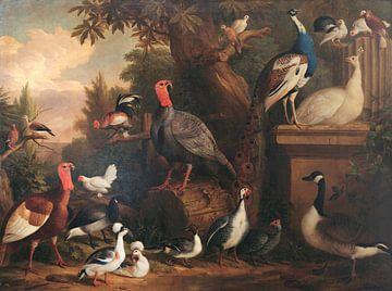 Vögel in einer Landschaft, Jakob Bogdani
