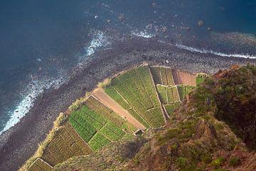 Cliff in Camara de Lobos on the island Madeira, Portugal van Rico Ködder