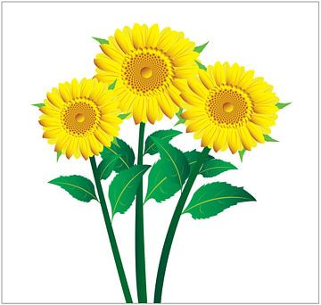 Zonnebloemen  illustratie met groene bladeren op een geel achtergrond van sarp demirel