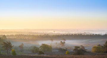 Sonnenaufgang mit Nebel von marijn zeilstra