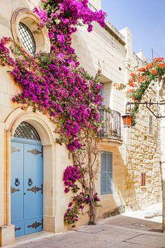 Straßenbild mit Blumen in Malta von Evelien Oerlemans