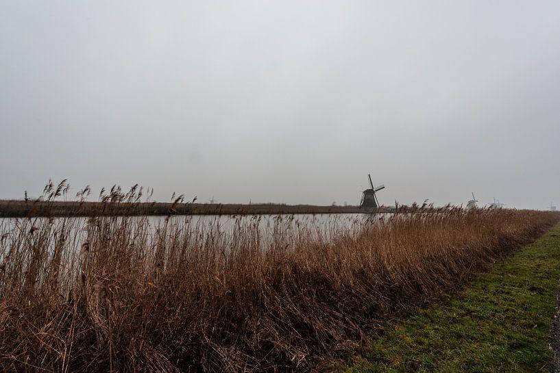 Kinderdijk Zuid Holland. van Brian Morgan