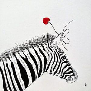 HeartFlow Zebra