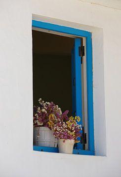 het blauwe venster van Bart Colson