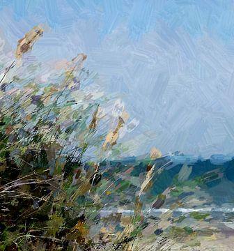Strandhafer von Kay Weber
